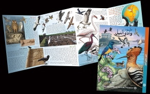 Foldout - Birds Arabic copy
