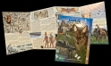 Arabic Ancient Wildlife Foldout