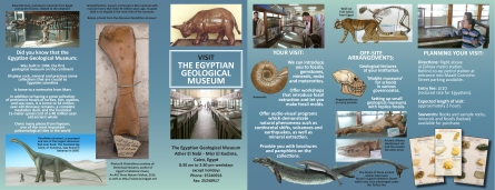 Egyptian Geological Museum