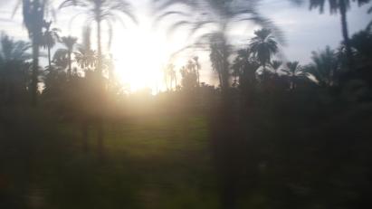 Screen Shot 2013-12-03 at 12.19.35 PM