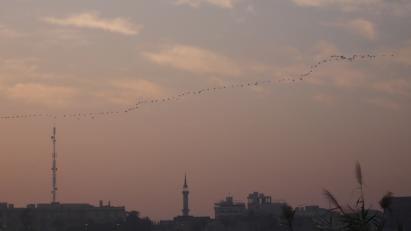 Screen Shot 2013-12-04 at 7.24.10 AM