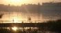 Screen Shot 2013-12-04 at 7.26.42 AM