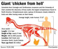 Graphic-Anzu-wyliei-dinosaur-chicken-from-hell