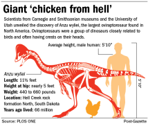 Graphic-Anzu-wyliei-dinosaur-chicken-from-hell