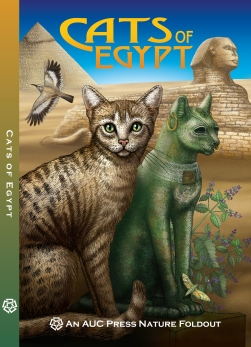 6 COVER Cats of Egypt with Spine