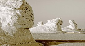 White-Desert-AUC